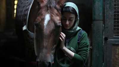 """""""Dressage"""" receives two nominations at Shanghai filmfest"""