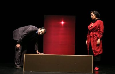 """Director merges plays by Tennessee Williams and Persian writer to stage """"extraordinary performance"""""""