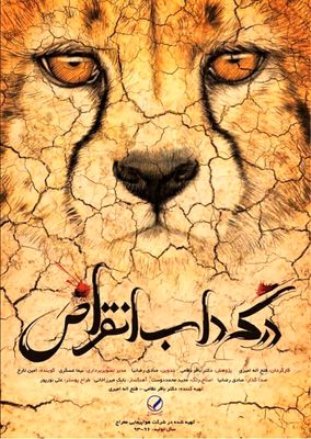 Iranian Doc on Asian Cheetahs to Go on Screen at UN