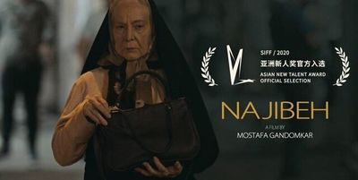 """Iranian director sees Shanghai fest chance to promote his debut film """"Najibeh"""""""