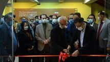 Intl. Silk Road calligraphy exhibition opens in Tehran