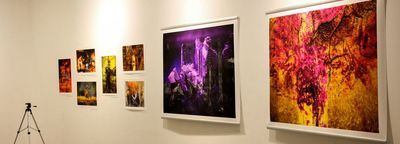 Czech illustrations on show at IAF